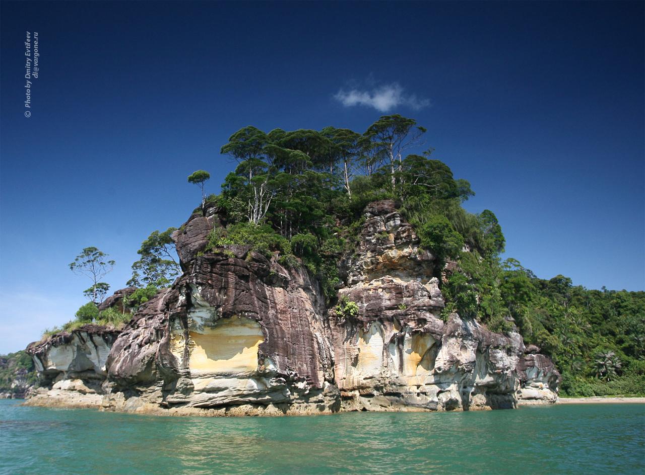 Малайзия, национальный парк Бако (с) фото Дмитрия Евтифеева