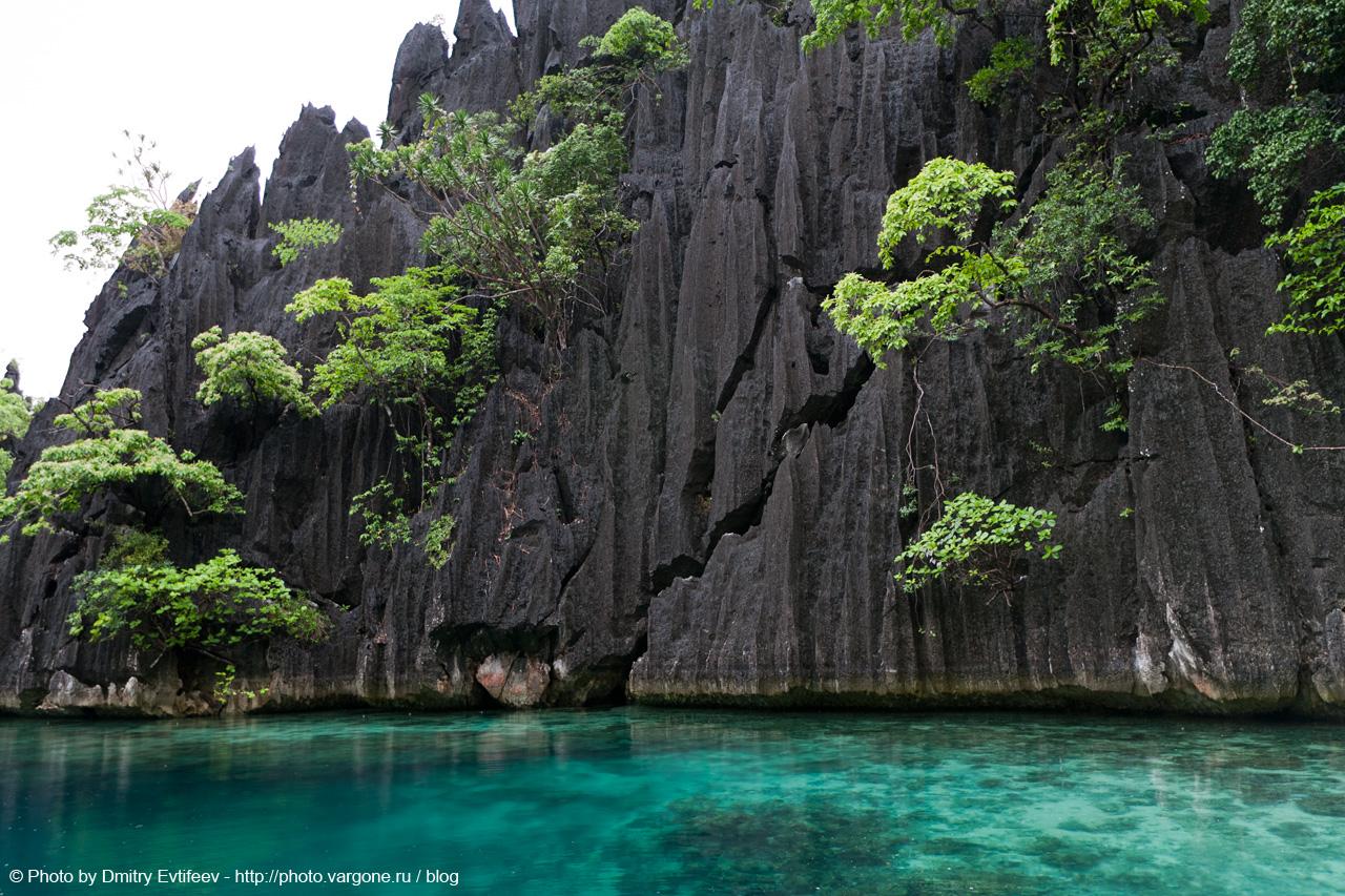 фото филиппин, Coron lakes (с) фото Дмитрия Евтифеева