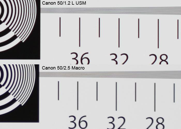 Canon 50/1.2L USM vs Canon 50/2.5 Macro, фотографическая мира